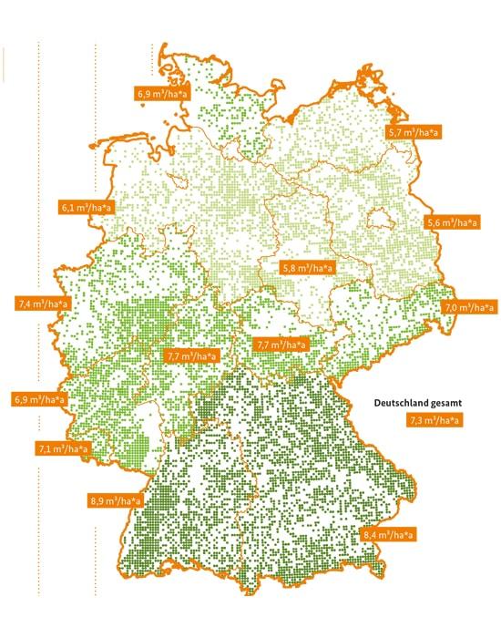 info grafik deutschland waelder holzbau-min